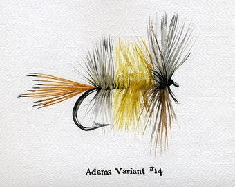 Fishing Fly - Adams Variant - 5 x 7 watercolor print by Cindy Day