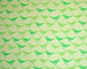 COUPON Sale - Valorie Wells, Nest, Birds, Lime Green, Free Spirit Fabrics, 100% Cotton Quilt Fabric, Green, Quilting Fabric, SELECT A SIZE