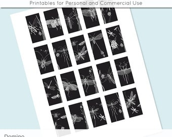 Vintage Bugs 1x2 Domino Collage Sheet Black and White Digital Images for Glass and Resin Pendants Magnets Paper Craft JPG