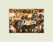 Carousel Horse at Hersheypark Carrousel Park 5x7 print with 8x10 mat
