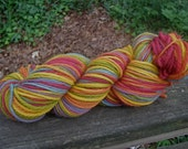 Rainbow Worsted Superwash--3 Ply Wool--4 Ounces--200 Plus Yards--Plant Dyed
