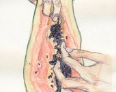 Papaya: Watercolor & Illustration 5x8.5in