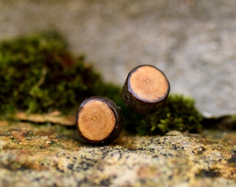 Elm Stud Earrings - Wooden Stud Earrings - Gold Plated Post Earrings - Limited Edition - Autumn  - Rustic - Woodland