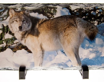 Wolf Photo On Natural Slate - 5 1/2 x 11 1/2