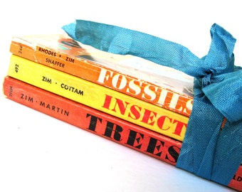 Fossils, Trees, Insects Golden Guide Book Set, Vintage Guide Books, Golden Guide Book Lot, Vintage Entomology Book, Vintage Fossil Book