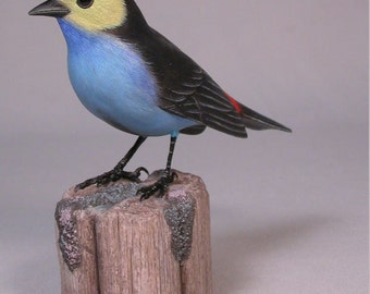 Paradise Tanager Hand Carved Wooden Bird Carving
