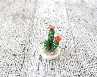Cactus with red flowers in bowl in 1:12