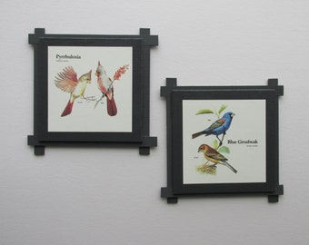 wall gallery - Feathered Friends -  a 2 pc  wall art collection - Boho Chic - romantic - eclectic