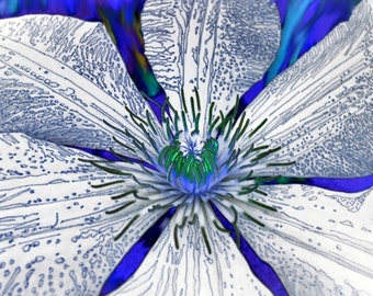 Blue Clematis PhotoArt Greeting Card