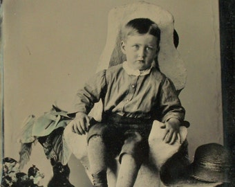 Half Plate Tintype Boy w/ Hand Tinted Plants, Good as Gold