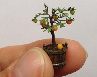 Quarter scale orange tree