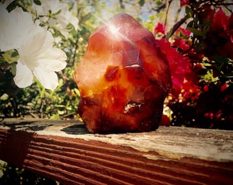 Polished Carnelian Fertility Flame with Baby Inclusion Stone Sculpture Wicca Reiki Healing Crystals FREE Shipping #38