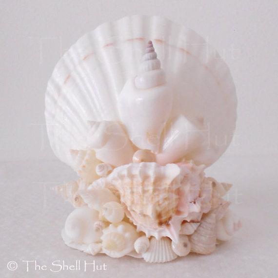 Items similar to seashell napkin holder or letter holder comes with pearl toothpicks beach house - Coastal napkin holder ...