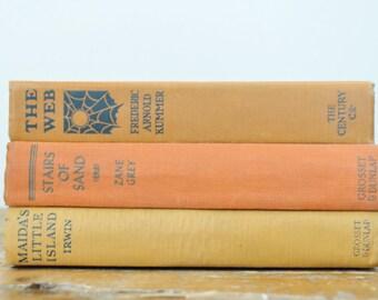 Vintage Orange Book Display Lot of 3 Shades of Orange Fiction Literature Books