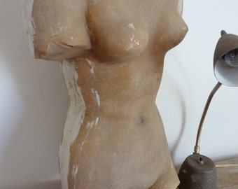 Female Torso Figure