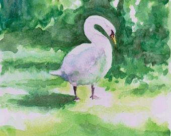 Guildford Swan