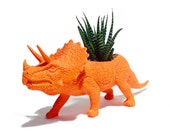 Andy the PLANTED Triceratops - the Original Toy Planter