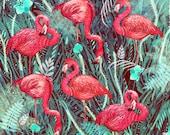 Flamingos // Signed A3 print