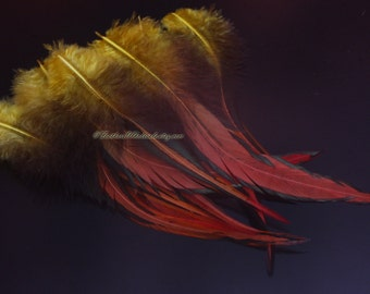 Holiday Feathers Large Arts & Crafts Feathers Mustard Burnt Orange Red Big Feathers Laced Rooster Feathers Two Toned Real Bird Feathers, 10