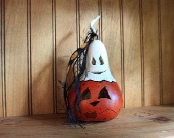 Ghostly Mini Gourd 4