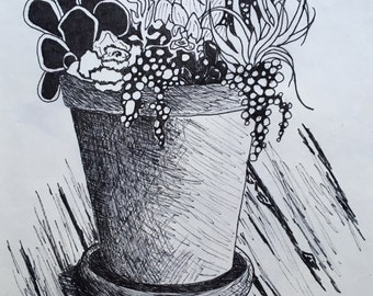 Original Ink Drawing of Succulents - 8x11