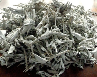 Loose White Sage - smudging supply, incense, natural herb, dried plant, Wiccan, Native American, Pagan, witchcraft, smudge, house blessing