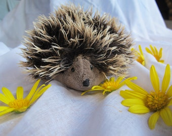 Hedgehog - soft toy animal - natural materials - Waldorf principles - suited as a small gift for birthday or Christmas - seasonal displays