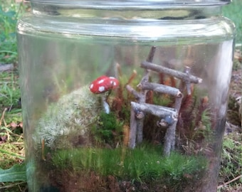 Small Living Moss Terrarium with Mushroom and Fairy Chair