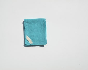 Linen Dish Towel in Aqua