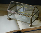 Vintage Brass and Glass Curio Box.