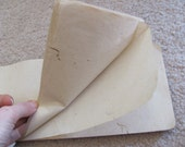 5 Blank Pages from an Early Century Japanese Ledger Book Mulberry Paper