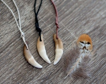 Natural Coyote Tooth Necklace on Eco Hemp Cord