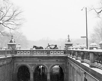 New York City Photography, Central Park Art, New York Winter Photography, Snow Park Bench, Black and White, Horse Carriage in Central Park