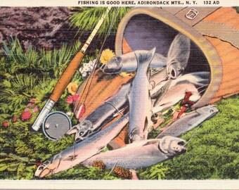 Adirondack Mountains, New York, Fishing - Linen Postcard - Unused (A9)