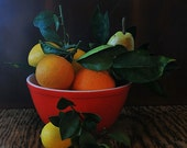 Oranges, lemons & a pear in a Pyrex bowl photo, kitchen decor, home decor, food photography