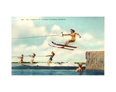 Digital Download Old Florida Vintage Postcard Cypress Gardens Botanical Water Ski Winter Haven Women Water Skiers