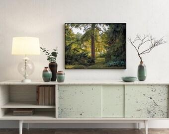 Vibrant Nature Landscape Glossy Original Photographic Print