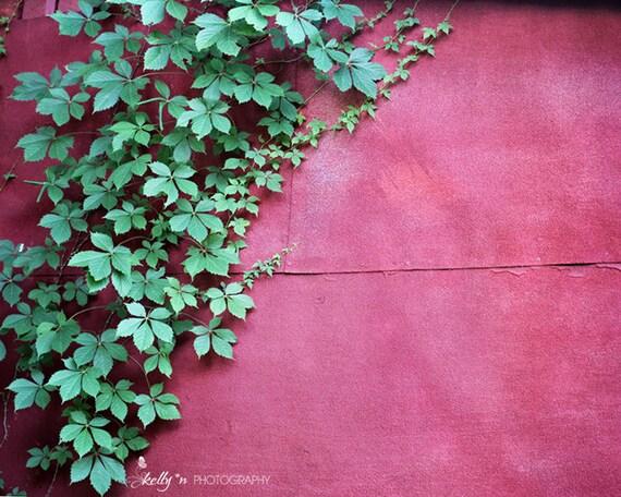 La nature photographie rouge mur vigne Print, escalade vigne Photo, Art rouge, feuilles vertes, Grange rouge Photo, Art mural jardin, Decor vert rouge