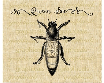 Queen bee instant clip art Pastel insect digital download image for iron on fabric transfer burlap decoupage pillow paper craft No. 2279