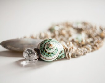 Shell, pearls necklace