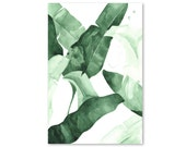 Beverly II Tropical Banana Palm Leaves Watercolor Giclee Fine Art Print Poster of Original Painting