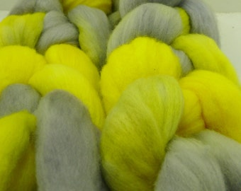 Sunshine and Shadows Handpainted Merino Roving!  Only one left!