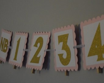 Pink and Gold photo banner