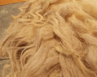 Unwashed Shetland Sheep Wool Cream Long- Xavier 3lb