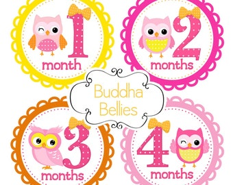 Monthly Bodysuit Stickers Owls in Pink and Orange  First Year Stickers For New Mom Baby Girl Fun Photo Prop G148