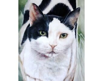 Custom Pet Portrait, Oil Painting, Pet Portrait, Pet Oil Painting, Animal Portrait, Cat Portrait, 11x14