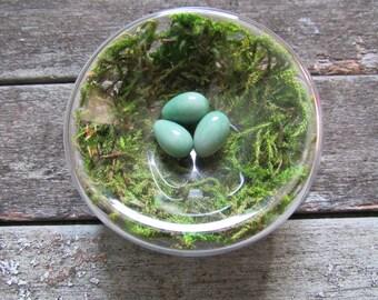 Hand Blown Glass Moss Filled Nest