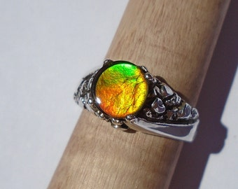 Canadian Ammolite Sterling Silver Ring 10