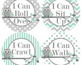 Baby 1st First MILESTONES Growth Stickers in Mint Grey Owls Nursery Theme MS300 Baby Boy Shower Gift Baby Photo Prop