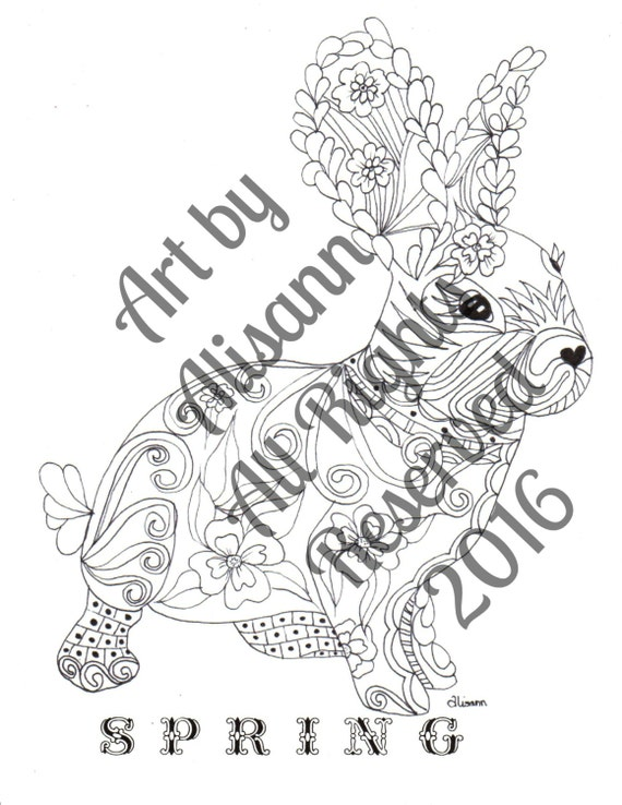 Bunny Spring Rabbit Coloring Books For Adults